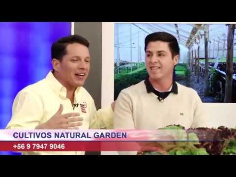 """Cultivos Natural Garden"" nos trae los mejor en verduras"