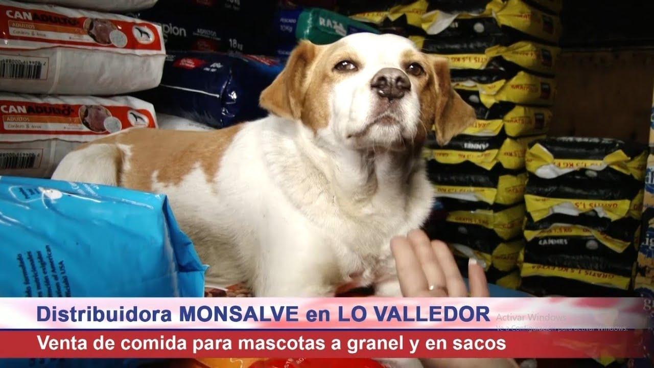 """Las mejores ofertas en alimento de mascotas en """"Lo Valledor"""""""