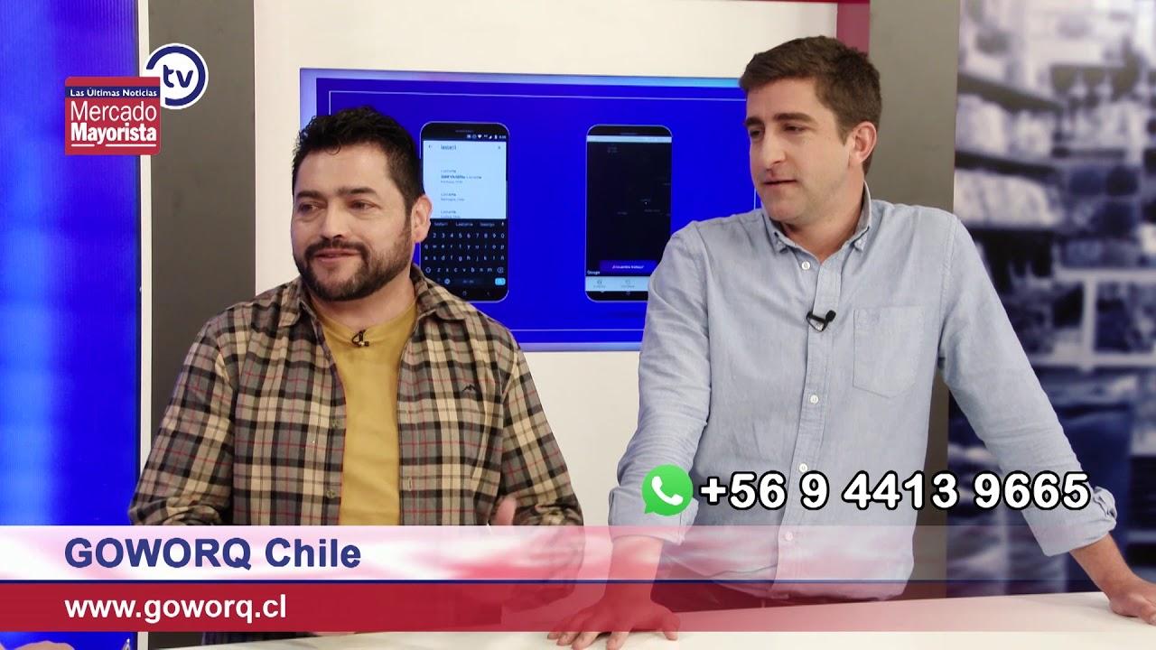 """""""Goworq Chile"""" es una App que te ayuda a conseguir empleo"""